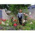 洛河镇幼儿园